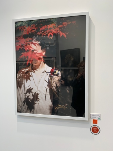 Cig Harvey's Emily & the Falcon, Camden, Maine, 2018 at Robert Mann Gallery